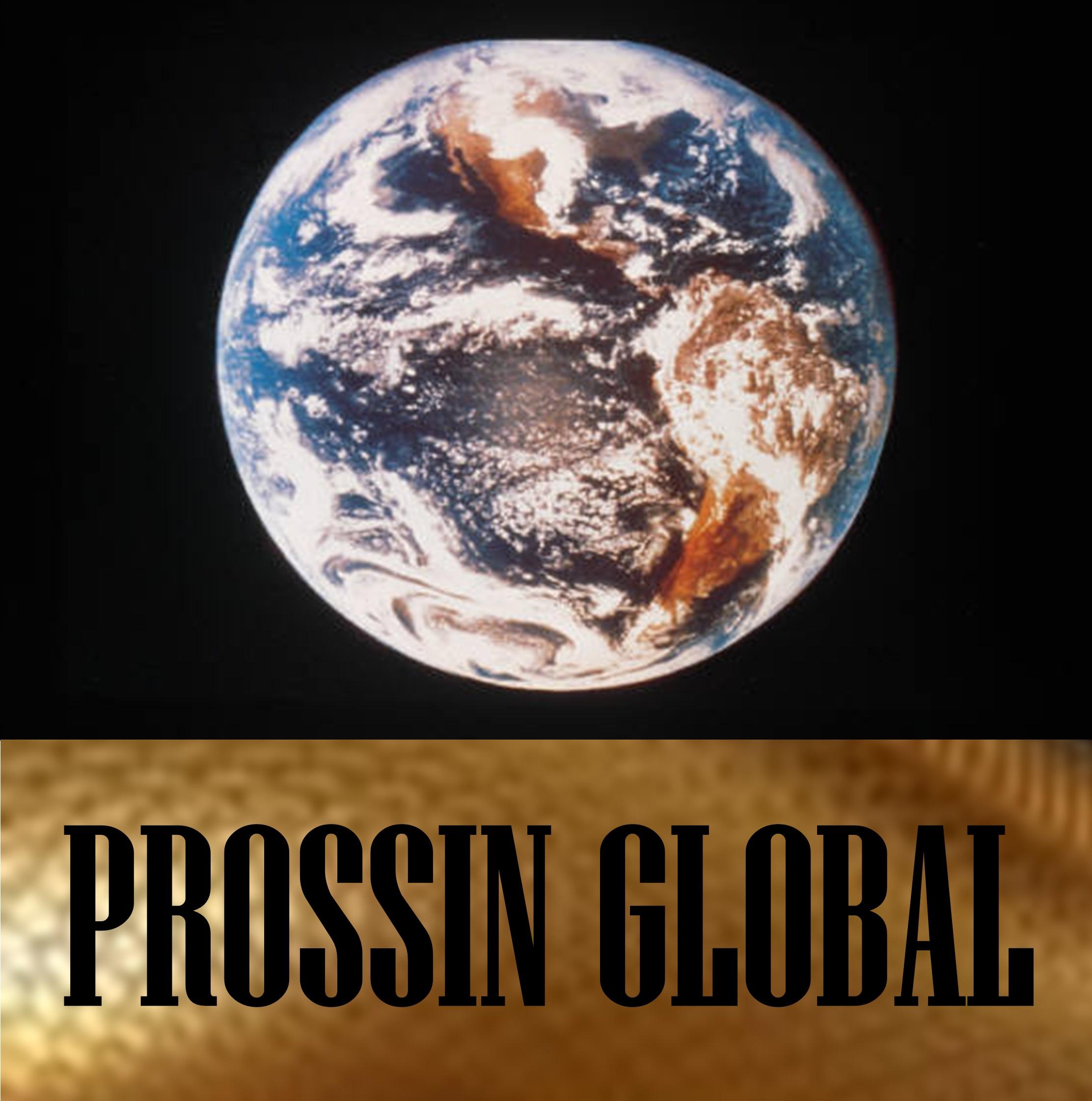 Prossin Global
